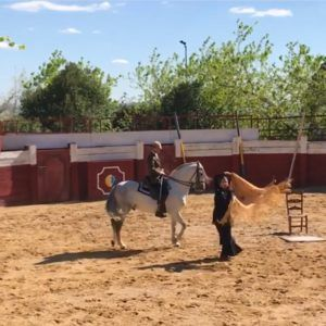 Capea Cordoba_Flamenco ecuestre