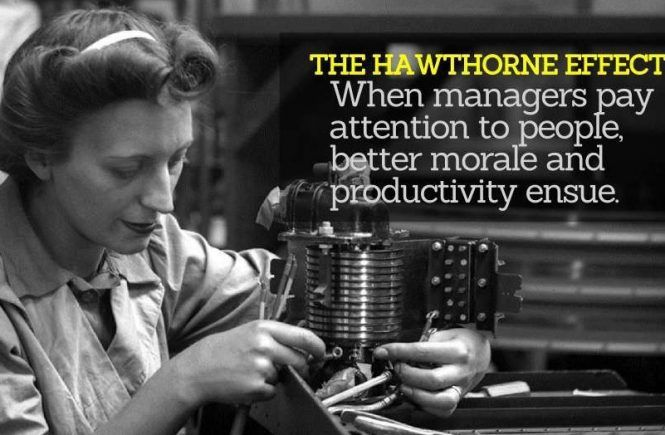 The_Hawthorne_Effect 2